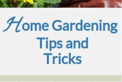 Convenient, Strain & Pain Free Gardening